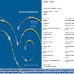 2. Primul Raport al al Retelei  Internationale a Concurenței (ICN, Neapole, Italia, Septembrie 2002)